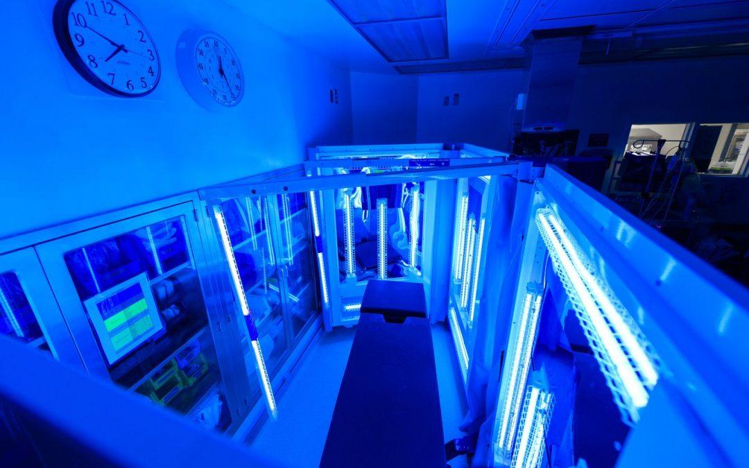 La luz ultravioleta es una de las formas más efectivas de desinfectar